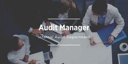 Audit Manager Position